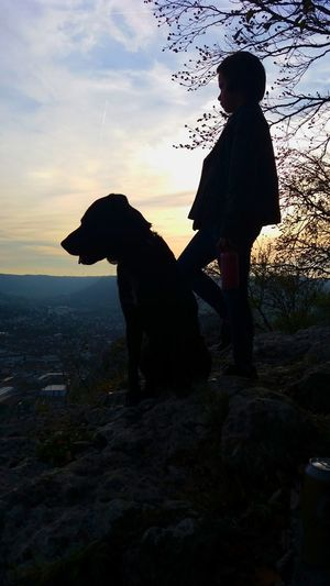 Schattenbild Silhouette First Eyeem Photo Playing With My Dog My Dogs Are Cooler Than Your Kids Hello World Abendstimmung My Little Baby