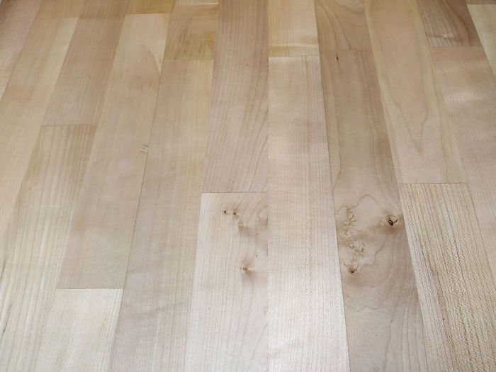 Low section of person on hardwood floor at home