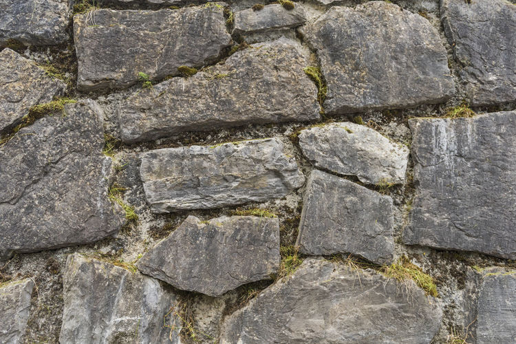 Ancient Animal Animal Themes Architecture Backgrounds Close-up Day Full Frame Gray History Limestone Nature No People Outdoors Rock Rock - Object Solid Stone - Object Stone Material Stone Wall Wall