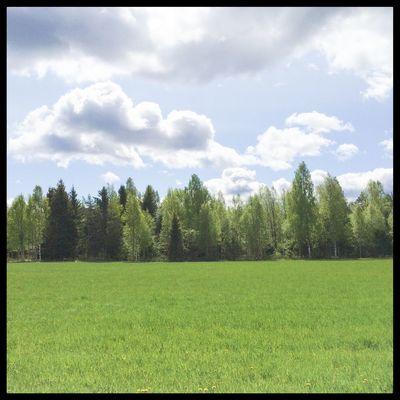 Summer green. Sweden Visitsweden Swedishmoments