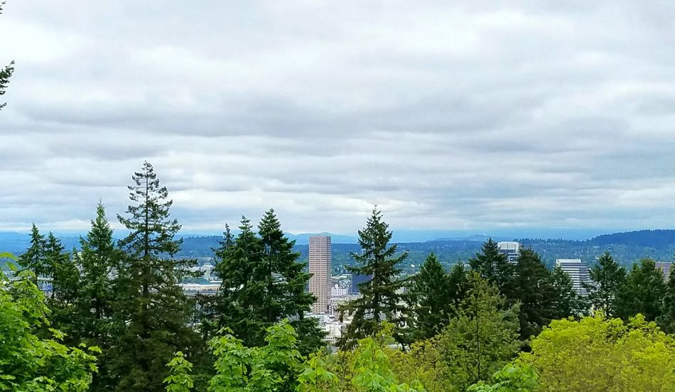 Downtown Portland Tree Nature Green Color Growth Outdoors No People Sky Forest Cloud - Sky Day Tranquility Landscape Beauty In Nature Cityscape City No Filter Horizon Architecture Portland, OR