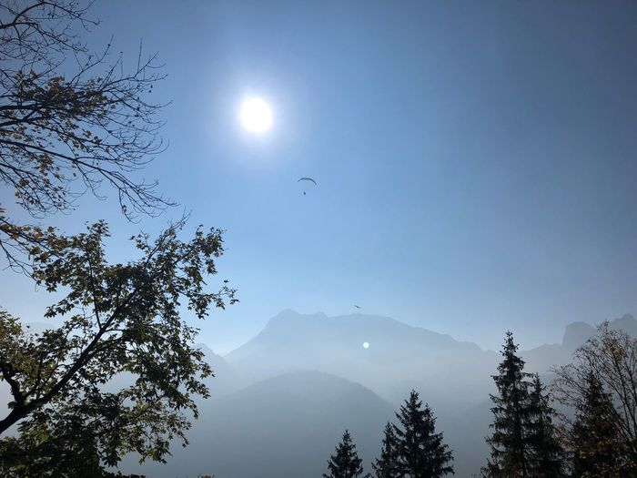 Paragliding Paragliding Paraglide Paraglider Tree Plant Scenics - Nature Beauty In Nature Tranquility Tranquil Scene Mountain Low Angle View Silhouette Outdoors Sun Mountain Range Day Nature Idyllic
