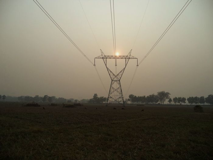the sun , the ultimate power Fog Flying Rural Scene Beauty In Nature No People Nature Outdoors Bird Landscape Sunset Sky Electricity  Cable Power Supply Technology Fuel And Power Generation Tranquility Field Electricity Pylon Scenics Power Line  Tree Day Grass Electricity  Power Line  An Eye For Travel