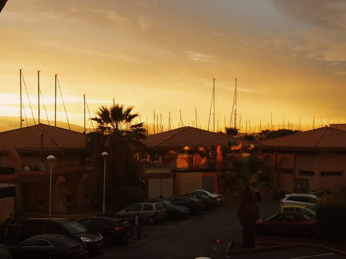 Saint Raphael Tramonto Sunset Sun ☀ Sole Sol Soleil Taking Pictures Palm Trees Costaazzurra