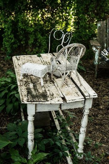 Garden Abandoned Table Chair