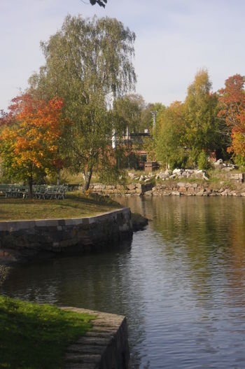 Tree Reflection Water No People Nature Fall Fall Colors Ruska Suomenlinna Helsinki Finland