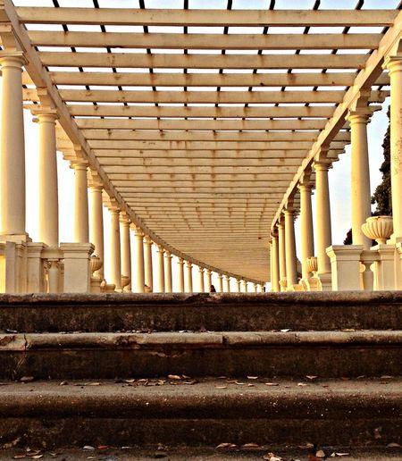 EyeEm Porto Porto NEM Architecture EyeEm Best Shots