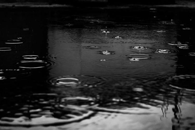 Lluvias de
