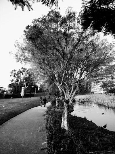 Together Let's Go. Together. Walkway On International Park International Park Sydney