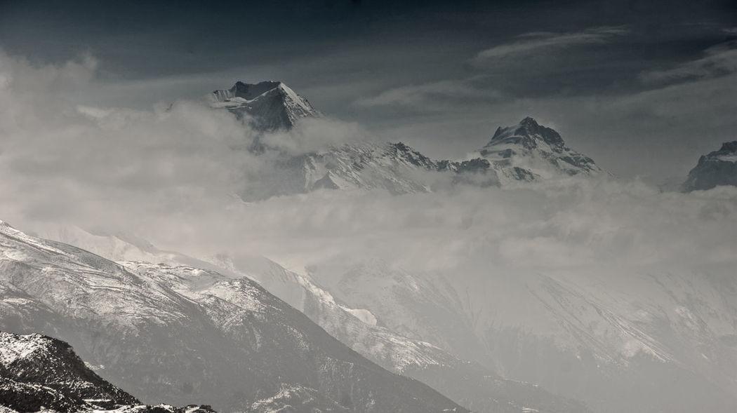 Mountain Fog Tree Sky Landscape Cloud - Sky