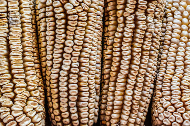 Full frame shot of corns
