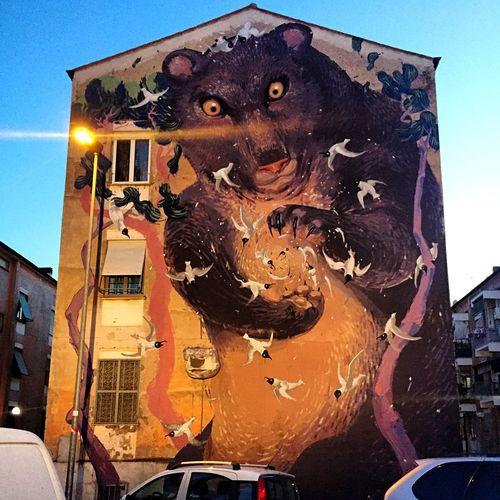 Roma Rome Murales Streetart Nofilter#noedit Senzafiltro Sanbasilio Streetphotography Bear Orso Progetto #Sanba riqualificazione periferie romane