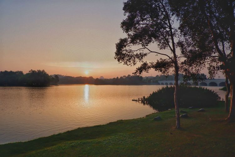 Sunset view at lake side Lake Side Sunset Tree Water Lake Sunset Reflection Wet Sky Landscape Tranquil Scene Calm Countryside Foggy Scenics