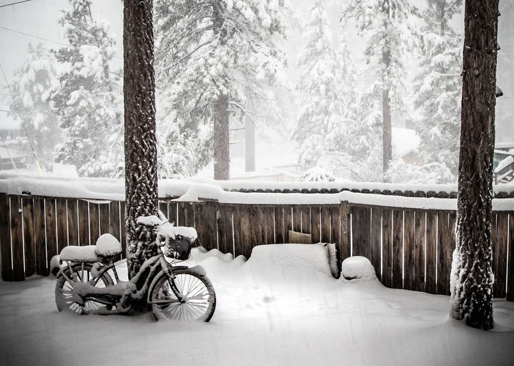 Go biking Check This Out Hanging Out Taking Photos Enjoying Life Snowstorm Wintertime Snowy Snow ❄ Check This Out Winter Wonderland Big Bear Lake Taking Photos