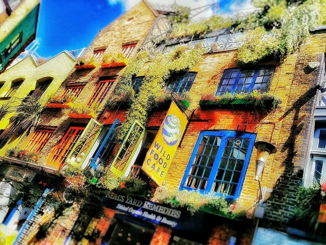 City Of London London Neal's Yard Colorful Summer Sunlight Yellow Windows Green Blue