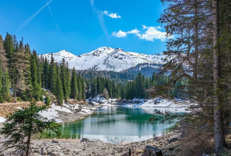 Schneeschmelze Bergsee Mountain Sky Snow Beauty In Nature Cold Temperature Winter Tree Scenics - Nature Snowcapped Mountain Water Mountain Range Mountain Peak Cloud - Sky Day Nature Tranquility No People Tranquil Scene