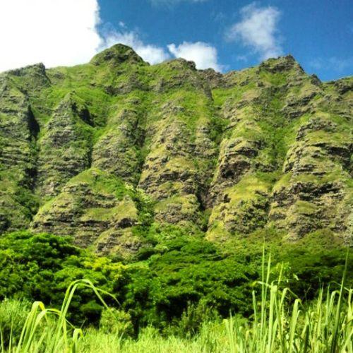 View from my run yesterday Koolaus Lovethisside Kaaawatokualoa