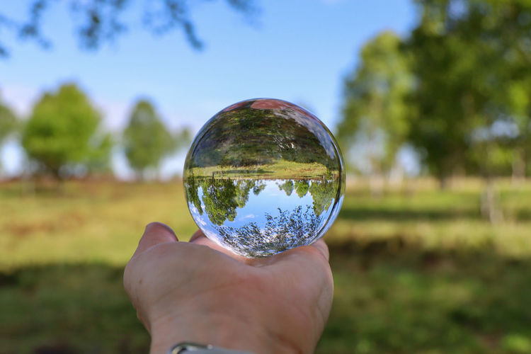 Cropped image of hand holding crystal ball on field