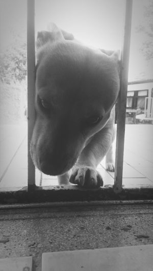 Black&white Chillin :)