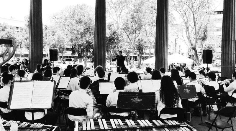 Musica Clasica Orquesta