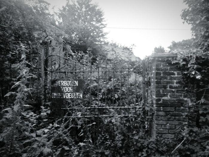 Farm Abandoned
