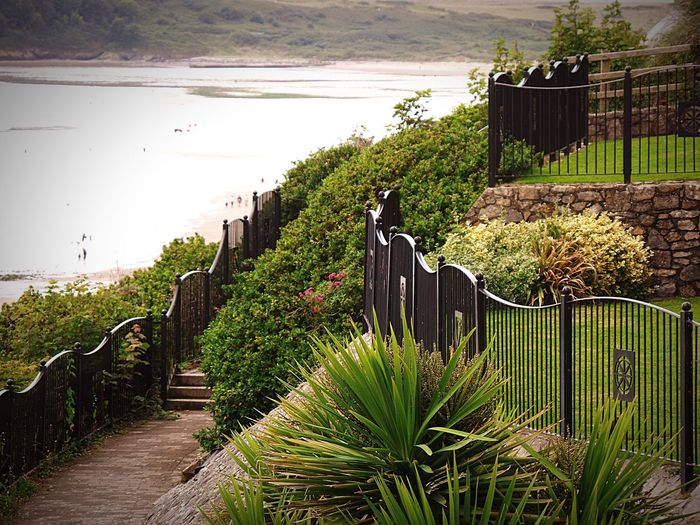 Photography Seascape Seaside Landscape Gardens Fences Wall - Building Feature Steps Growth Flowers Tranquility Scenics Freshness Tranquil Scene Beautiful