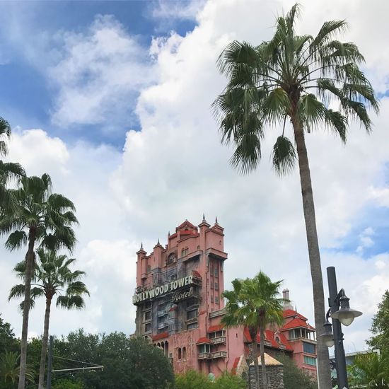 Palm Tree Sky Architecture Built Structure Day Disney DisneyWorld EyeEm Selects Mickey Mouse Tower Of Terror Hollywood Studios