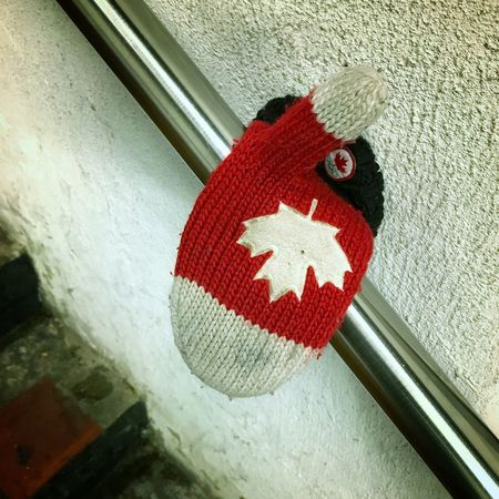 Oh Canada! @tomhanks Winter No People Found Lost Mittens Canada Red