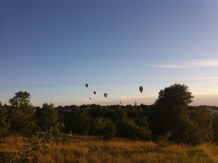 Taking Photos Talsi Check This Out Enjoying Life Clouds Sun Tree Hotairballoons Balloons