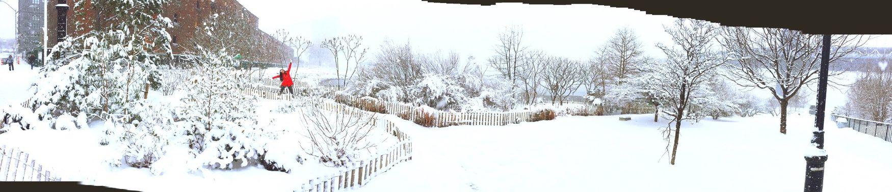 NYC snow loveit