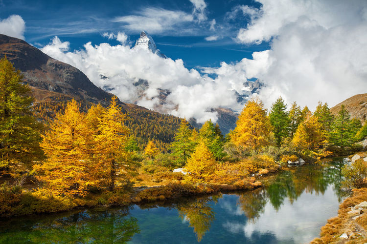 Swiss Alps. Alps Autumn Beauty In Nature Clouds Europe Fall Lake Landscape Mountain Nature Outdoors Sky Swiss Alps Switzerland Tranquility Tree Water