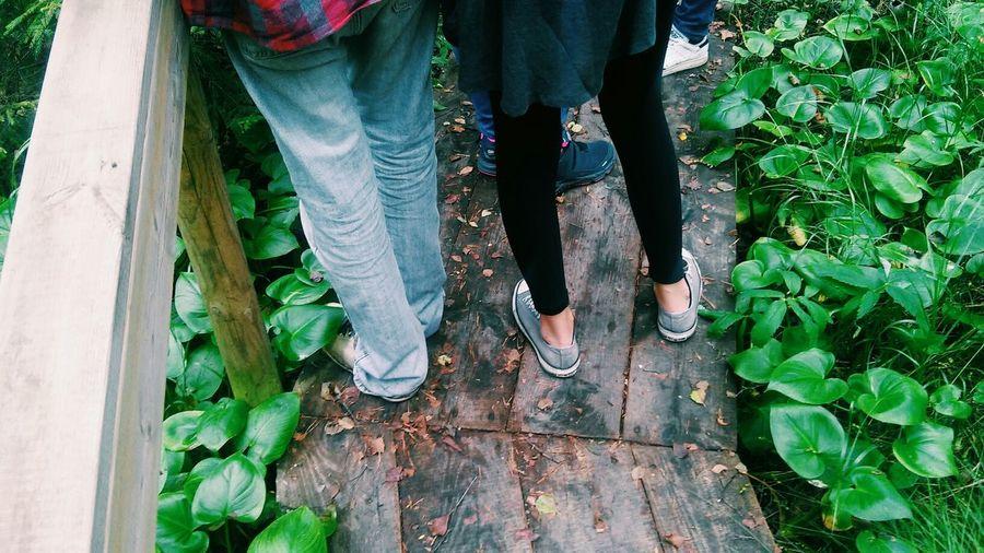 Legs Of People Standing On Narrow Boardwalk