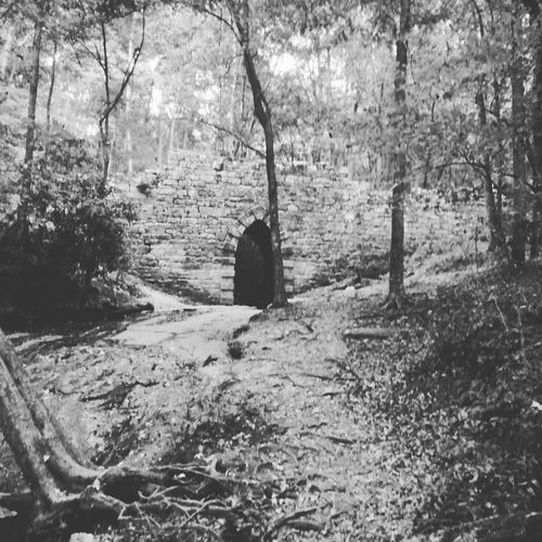 Blackwhitephotography Gothicarchitecture 1820s Yeahthatgreenville Getoutexpler collection Fall_collection FollowMeOnInstagram