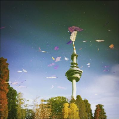 mannheim Fernsehturm Luisenpark Mannheim Spiegelung Reflection Autumn Autumn Leaves Autumn Colors