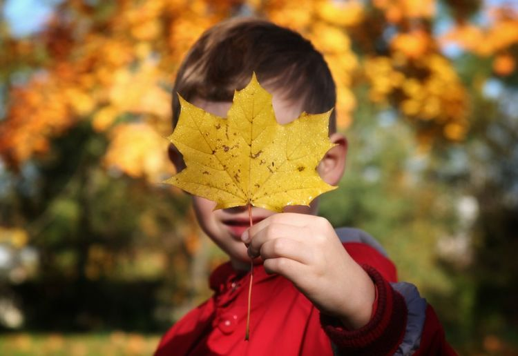 One Autumn