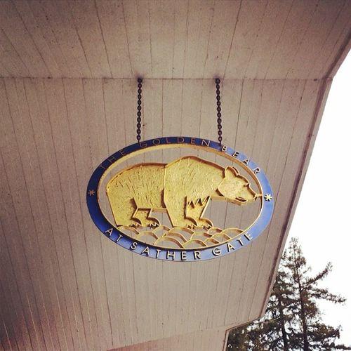 #ucberkeley #mascot #goldenbear