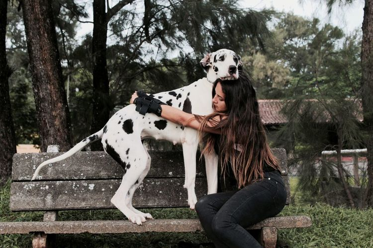 Woman hugging big dog on park bench