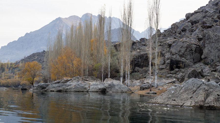Water Tree Lake Nature Landscape Mountain Pakistan Autumn Yellow Leaves Beautiful Nature