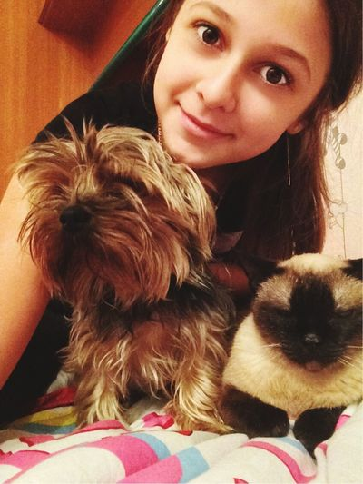 My dog and cat))) wooy!