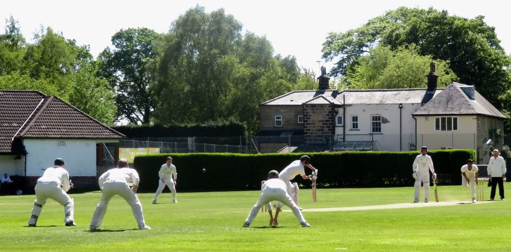 Cricket in