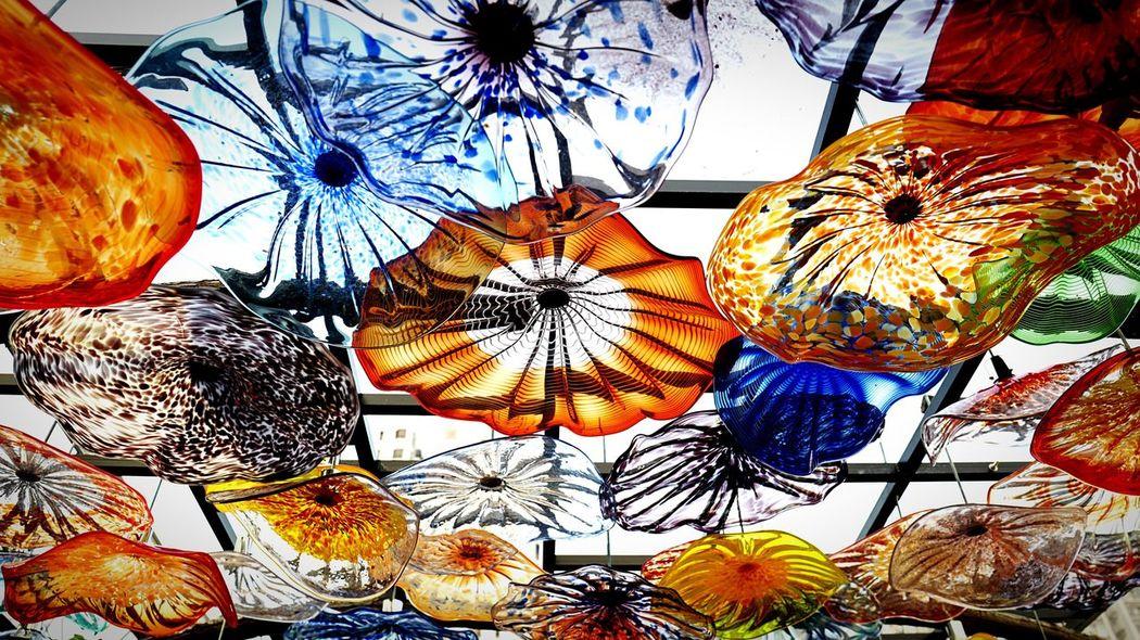 Glass Flowers HongKong Discoverhongkong Leica Leicaq EyeEmBestEdits EyeEmBestPics EyeEm Gallery Eyemphotography Chihuly Chihuly Garden And Glass Shatin