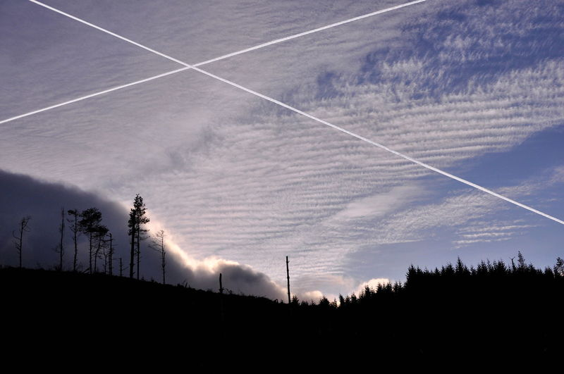Scottish flag on skyes Chemitrails Scotland Trees Beauty In Nature Contrail Day Forest Free Scotland Love Scotland Mountains Nature No People Outdoors Scenics Scottish Flag Silhouette Sky Symbolic  Tranquil Scene Tranquility Tree Vapor Trail Yes Scotland St. Andrews Cross 10