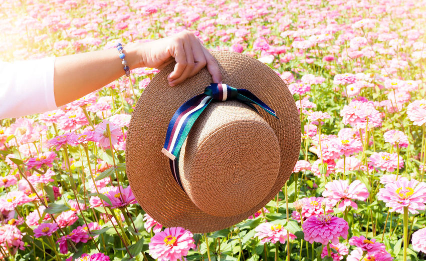 Close-up of woman holding hat over pink flowering plants