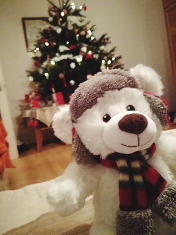 Teddy Bear Christmas Toy Christmas Tree Holiday - Event No People Close-up Celebration Childhood Tree Gift