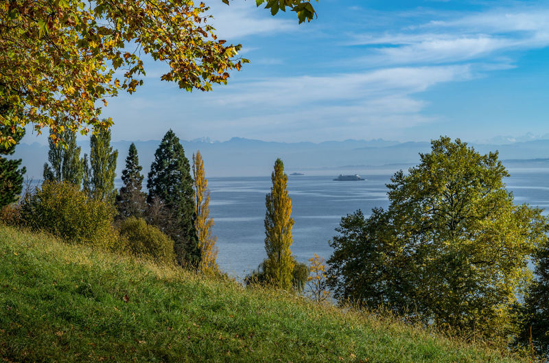 Autumn Autumn Colors Autumn Leaves EyeEm Germany Lake Constance Mainau Beauty In Nature Grass Green Color Growth Lake Lake View Landscape Nature Scenics Sky Tranquility Tree Water Lost In The Landscape The EyeEm Collection Premium Collection Getty Images No People Second Acts