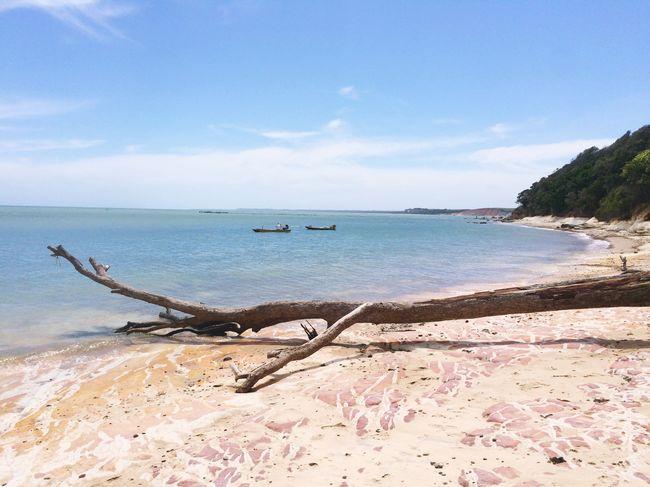 Nature Intothewild EyeEm Nature Lover Naturelovers Beach Empty Places Exploring Adventure Beautiful Nature Eye Em Nature Lover