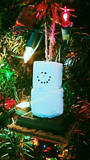 Christmas Tree Frosty The Snowman Christmas Ornaments S'mores Christmas Christmas Lights Happiness ♡ Happiness How You Celebrate Holidays Festive Season Live, Love, Laugh