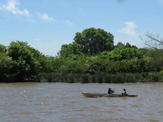 Beauty In Nature Day Delta Men Nature Nautical Vessel Oar Outdoors People Rowing Sky Tree Water