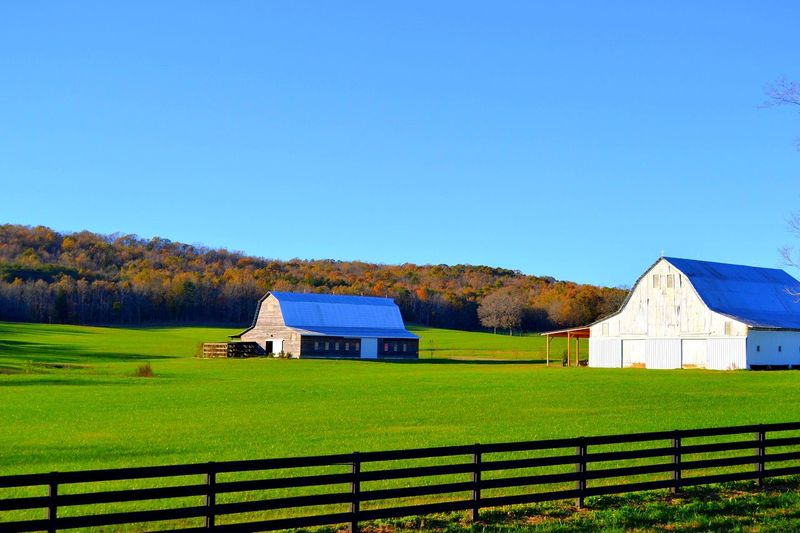 Barn Farm Fall Architecture Built Structure Sky Plant Building Exterior Building Copy Space Blue Grass Field Clear Sky Land Green Color House Day Landscape Nature No People Sunlight Growth