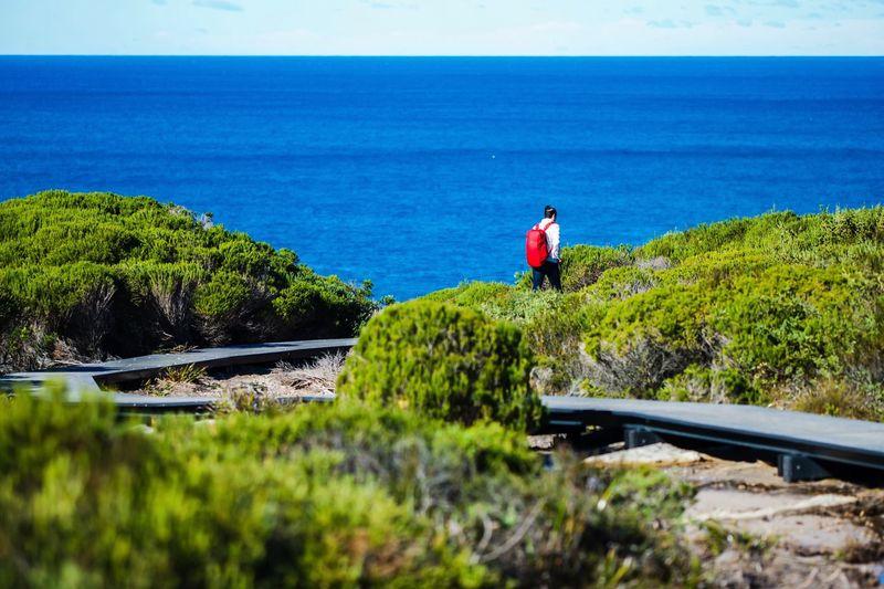 Rear view of man walking on field against sea